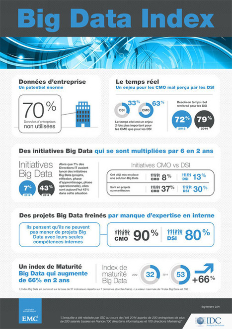 Infographie : les initiatives Big Data ont été multipliées par 6 en 2 ans en France selon le «Big Data Index» de EMC et IDC - Offremedia | Datas Management | Scoop.it