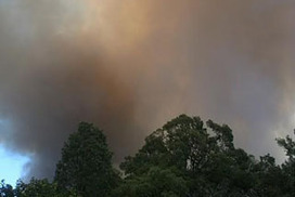 Hovea man dies defending home from Perth hills bushfires   Year 10 Geography   Scoop.it