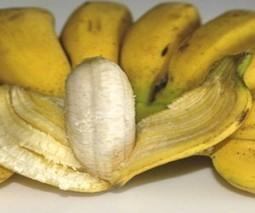 Vous n'avez peut-être jamais mangé de banane | T'as la bannanne couzain ! | Scoop.it