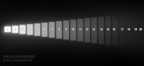 Dynamic Range: Film vs Digital | wolfcrow | Photography | Scoop.it