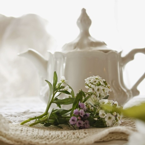 Bella's Rose Cottage: Tea with Some Bunny... | Cottage Gardening | Scoop.it