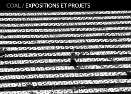 Art et Soutenabilité: 'Connecting Patterns' pour une Culture de la Complexité : COAL | ART AND COMPLEXITY, ART ET COMPLEXITE | Scoop.it