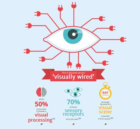 Overdose de mots sur Internet : notre cerveau préfère les images - Rue89 | Découvrons le fonctionnement de notre cerveau | Scoop.it