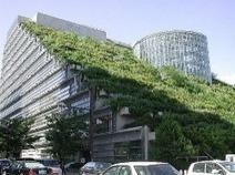 Materiales ecológicos en la construcción - Vida Halal | Materiales en la Construcción | Scoop.it