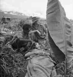 The Battle for Australia - The Kokoda Track | Australians at War | Scoop.it