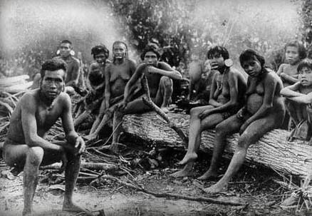 La génétique au service de l'histoire : les Amérindiens aux ancêtres polynésiens | Chroniques d'antan et d'ailleurs | Scoop.it