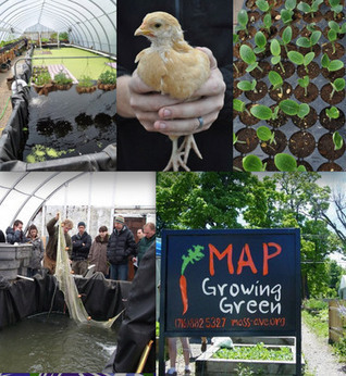 MAP's Urban Agriculture Training - Buffalo Rising | Green Gnome Garden News | Scoop.it