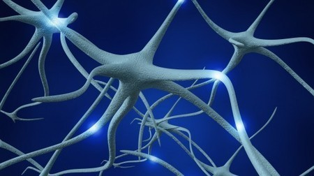 Gel-coated implants could reverse paralysis caused by nerve damage | Science :) | Scoop.it