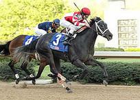 Kentucky Derby Time | Louisville Real Estate | Scoop.it