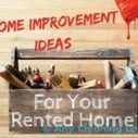 9 Easy Projects to Improve Your Rented Home | House cleaning | Scoop.it