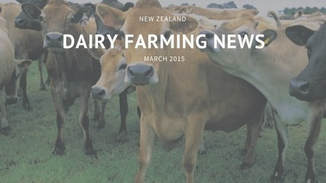 New Zealand Dairy Farming News For March 2015 | Waibury Agricultural Farm Investments | Scoop.it