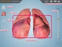 PROYECTO #GUAPPIS: Living Lung: ¡si respira...! | iPad classroom | Scoop.it