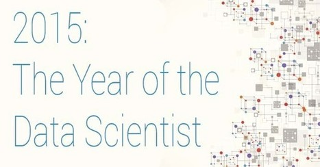 2015: The Year of the Data Scientist | HR Analytics and Big Data @ Work | Scoop.it