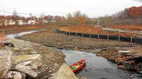 New Haven's West River flowing freely again in Westville after dam removal - New Haven Register | Fish Habitat | Scoop.it