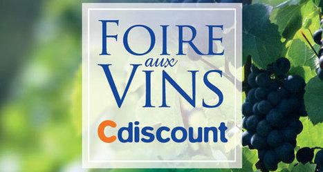 12 bouteilles pour la Foire aux Vins Cdiscount | Gastronomie et plaisirs gourmands | Scoop.it