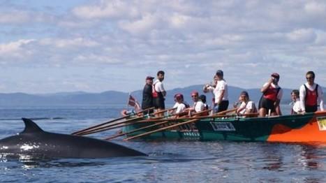 Indianoak | Les rameurs d'Ibaialde sur les traces des premiers Basques | EITB Actualités Société | Généalogie en Pyrénées-Atlantiques | Scoop.it