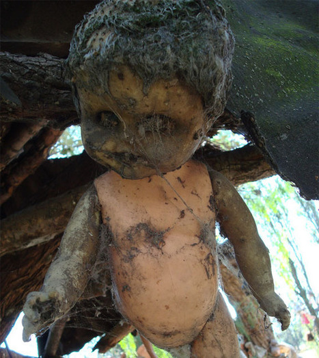 This Island Creeps-Out even Muchacho Spanky! | Adventures in Life | Scoop.it
