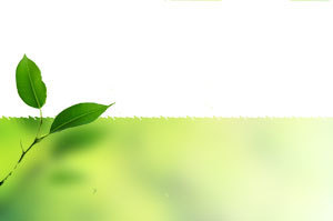 Marie-Hélène Branciard - Emploi web 2.0 Eco-emploi - Emploi vert | Recrutement Emploi Environnement et ESS | Scoop.it
