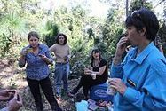 Dungog, Australia residents celebrate continued protection of local forest - Wikinews | Land and Water Management | Scoop.it
