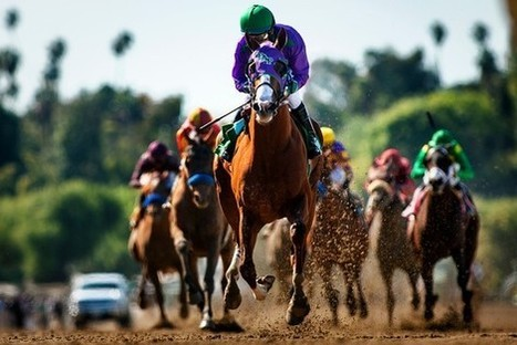 How California Chrome threatens to edge Kentucky out of the picture. | Horse Racing News | Scoop.it