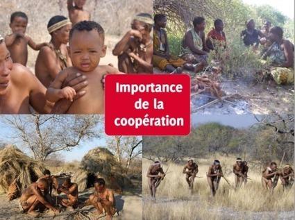 Les origines de la morale, ma thèse et une FAQ   C@fé des Sciences   Scoop.it