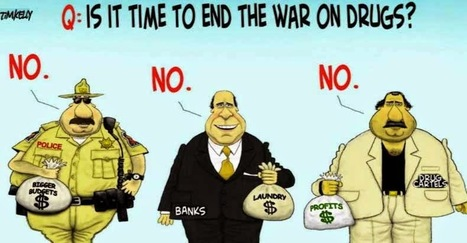 War on $$$ Drugs $$$  #FAIL | Criminal Justice in America | Scoop.it