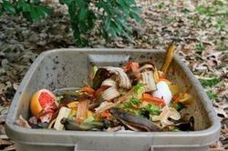 New-York va composter ses déchets alimentaires - Journal de l'environnement | Compostage : Déchets verts & Biodéchets | Scoop.it