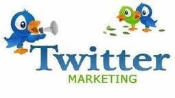 How to expand your business through Twitter marketing | Hispanic Market | Scoop.it