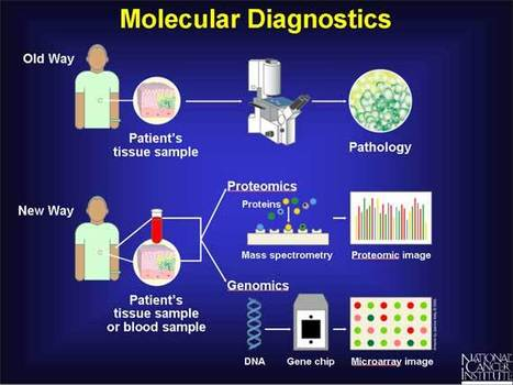 Global Molecular Diagnostics Market Expected to Reach USD 8.7 Billion through 2019: Transparency Market Research | Transparenc Market Research | Scoop.it