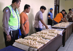 Some 2,000 Smuggled Turtle Eggs Seized in Balikpapan - The Jakarta Globe | Chris' Regional Geography | Scoop.it