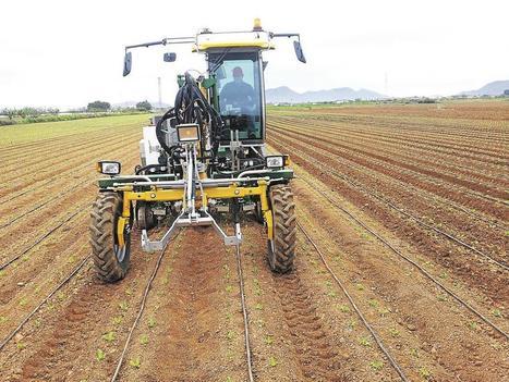 Légumes: la fibre verte de Bonduelle | l'AEI agriculture ecologiquement intensive | Scoop.it