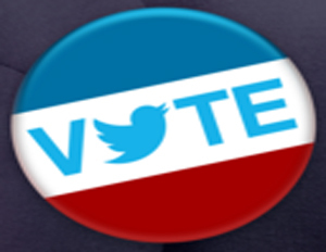 Social Media Guide to the 2012 Presidential Election | Sociolgy Scoops! | Scoop.it