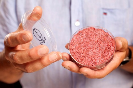 Lab-grown beef taste test: 'Almost' like a burger | science and technology, consuming cultures, tesc | Scoop.it