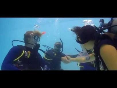 Making Scuba Diving a Career   DiverSync   Scoop.it