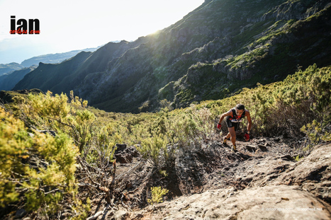 Ultra Skymarathon Madeira 2016 #SWS2016 – Race Images and Summary | Talk Ultra - Ultra Running | Scoop.it