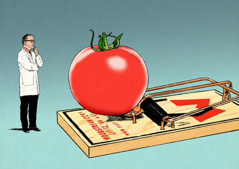 Seed Money: True Confessions Of A Monsanto Apologist   Food issues   Scoop.it