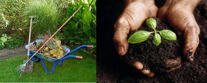 Compost, bueno para los vegetales y para el medio ambiente | Noticias de ecologia y medio ambiente | Infraestructura Sostenible | Scoop.it