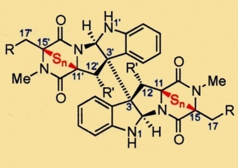 Research update: Chemists find help from nature in fighting cancer | Wiki_Universe | Scoop.it