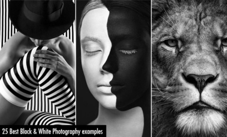 25 Best Black and White Photography examples and Tips for Beginners | Hitchhiker | Scoop.it