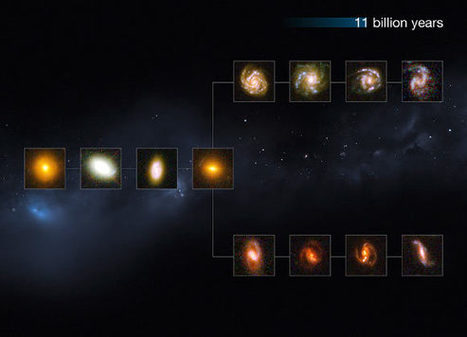 Hubble Zooms in on Galaxies in Early Universe | Biosciencia News | Scoop.it