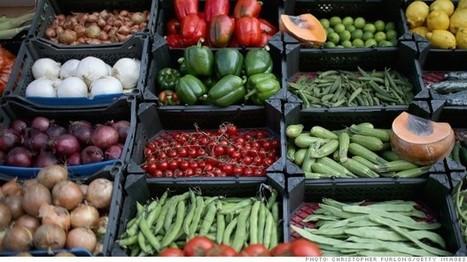 Cómo lograr que tu comida dure más | aprender a emprender | Scoop.it