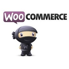 How to fixing Outdated WooCommerce Templates | Web tutorials | Scoop.it