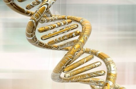 Blonde Hair Gene Identified : DNews   Genetic engineering and Human genetics, background reading and resources for IB   Scoop.it