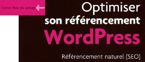 Optimiser son référencement WordPress : Référencement naturel par Daniel Roch - BoiteAWeb.fr | SEO | Scoop.it