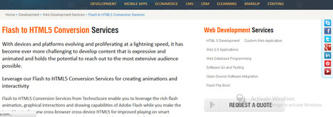 Flash to HTML5 conversion services | TechnoScore | Best Website related services by TechnoScore | Scoop.it