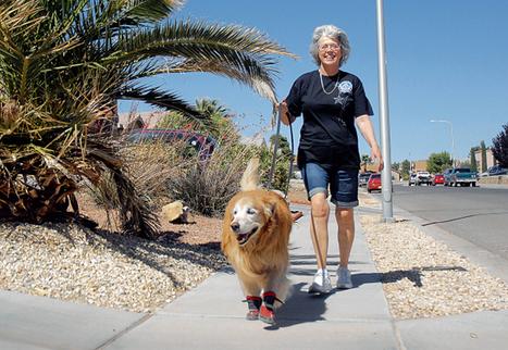 Walk4Fitness focuses on senior health through walking - Las Cruces ... | Healthy Golden Years | Scoop.it