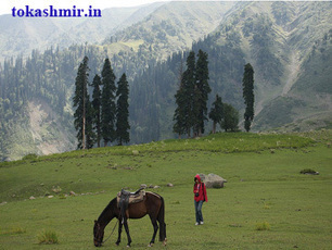 Visiting places in Kashmir, Tourist places in Jammu with picture | Indian Travel World | Scoop.it