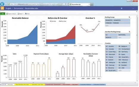 Reporting for Microsoft DynamicsStrengths and Weaknesses of Excel Web Services | Data Management, Data Quality | Scoop.it