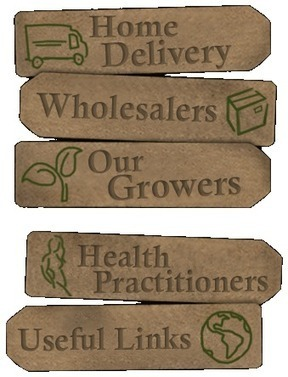 The Natural Foodstore - Your Organic Marketplace | Organic Food for Healthy Living | Scoop.it