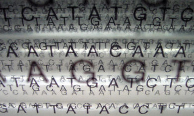Human genome sequencing: the real ethical dilemmas | Biology vol for Sixth Form | Scoop.it